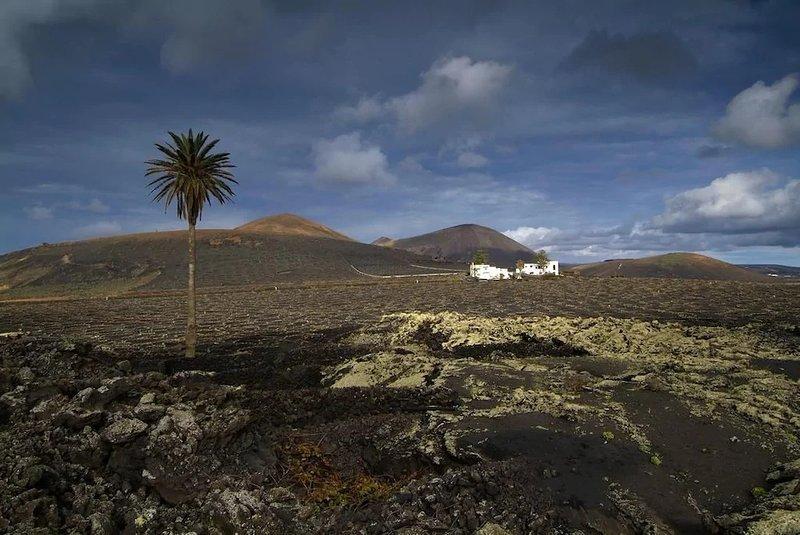 Estudio Tisalaya, Sleep between volcanoes, holiday rental in Tinajo