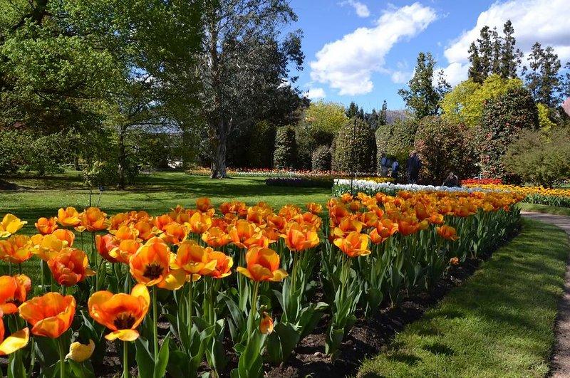 Tulipanes en Villa Taranto