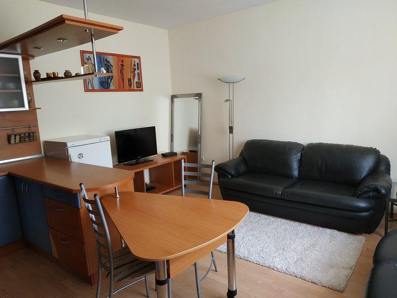Comfortable apartment in Bratislava Vajnory, vacation rental in Ivanka pri Dunaji