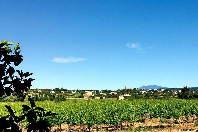 Vista del parque en el pueblo y Mont Ventoux