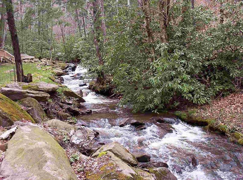 Bear Paw Falls, Rushing Creek