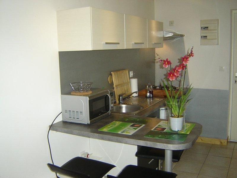 Beautiful apt with terrace & Wifi, alquiler vacacional en Cournonterral
