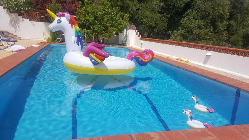 Beautiful studio with swimming-pool, vacation rental in Sines