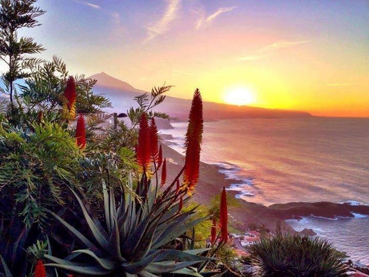 Apartamento Tily,vistas mar, montaña,Teide,Wi-Fi,parquin privado,zona tranquila, vacation rental in La Guancha