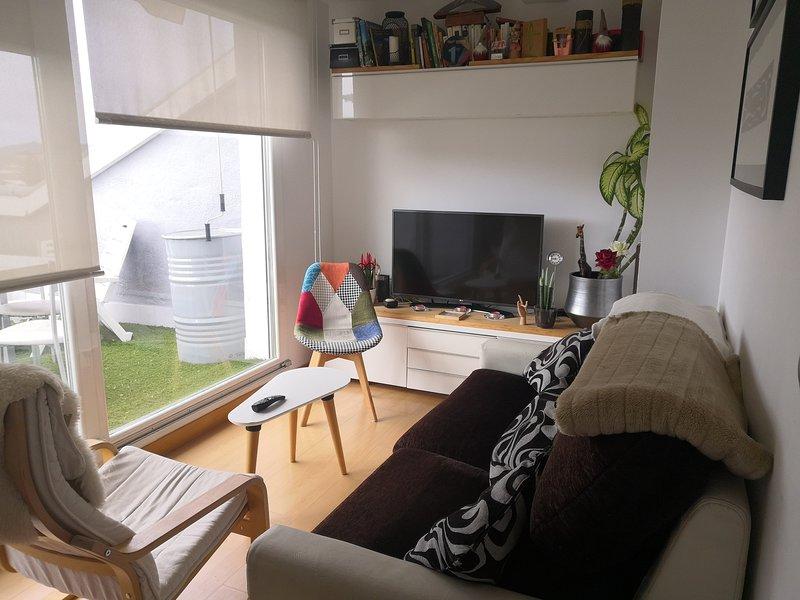 ATICO CON PRECIOSAS VISTAS EN EL CENTRO DE VITORIA, vacation rental in Vitoria-Gasteiz