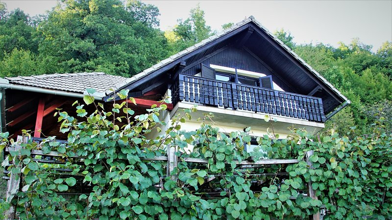 Vineyard cottage - Zidanica Zajc, holiday rental in Straza