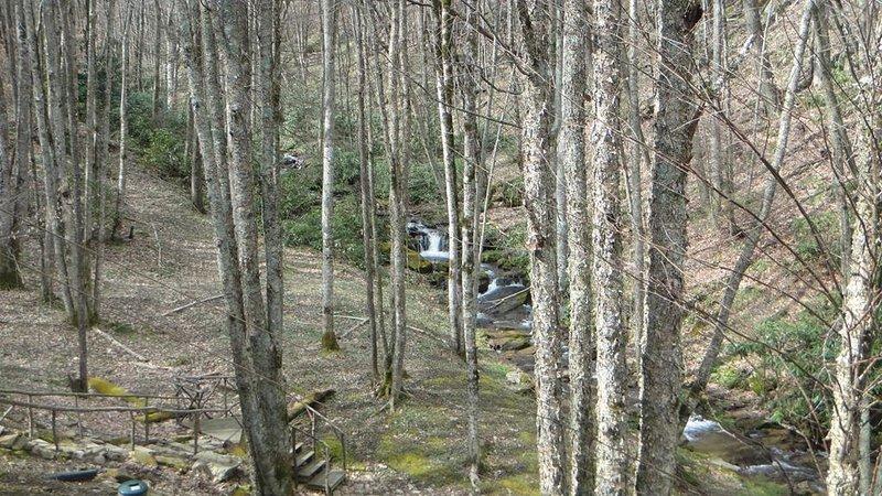 Creekside Falls, (4) .JPG