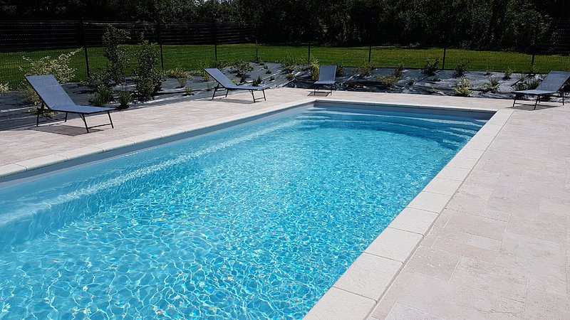 Amazing house with swimming-pool, vacation rental in Saussignac