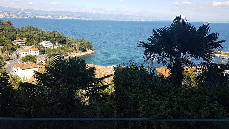 Nice apt with swimming-pool & Wifi, holiday rental in Ika