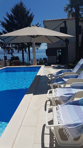 Spacious house with swimming-pool, holiday rental in Ika