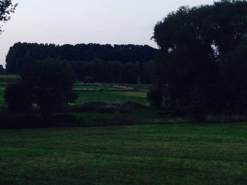 Duintje 2, vacation rental in Flobecq