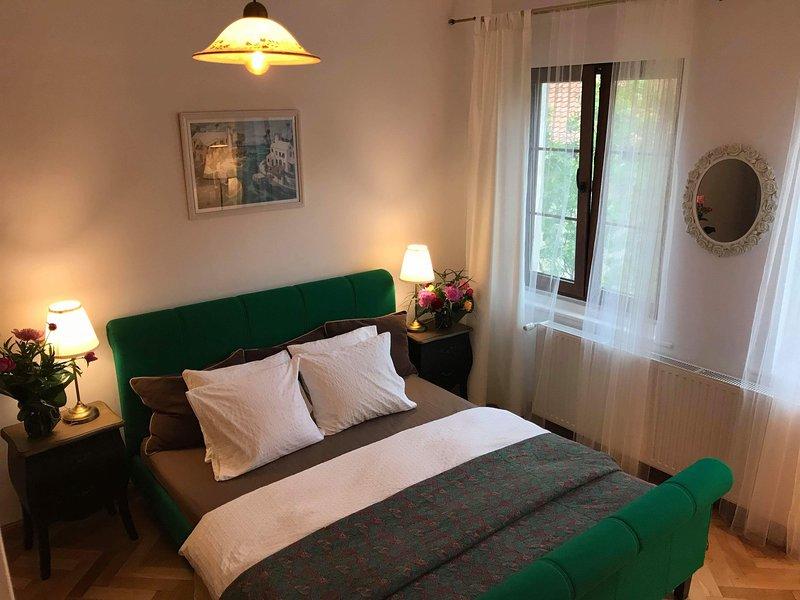 Casa Baciu, holiday rental in Rasnov