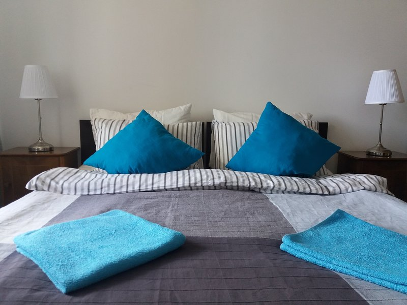 Spacious 3 BR apartment, 3 min to metro, air-conditioned, holiday rental in Chelyuskinsky