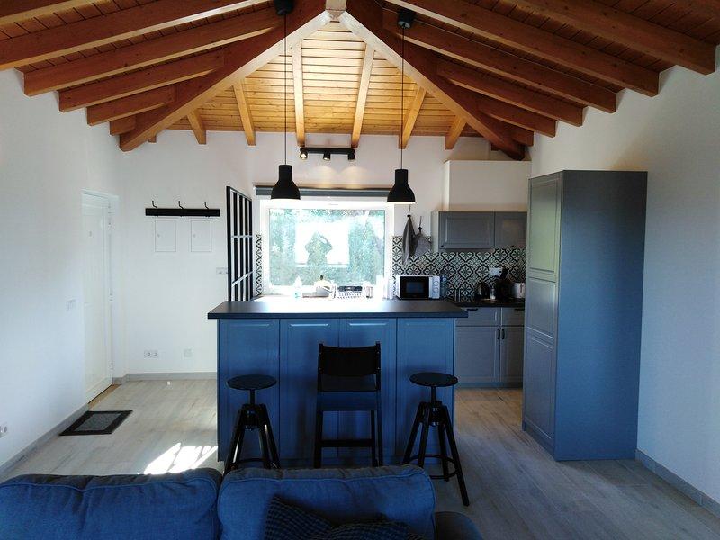 CARLOS APARTMENT - PENTHOUSE, location de vacances à Bensafrim