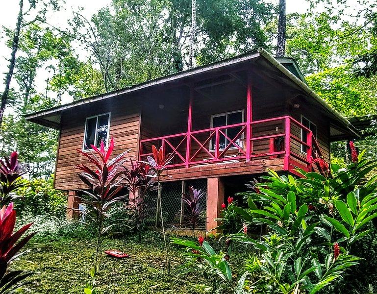 Jungle Villa – semesterbostad i Isla Bastimentos