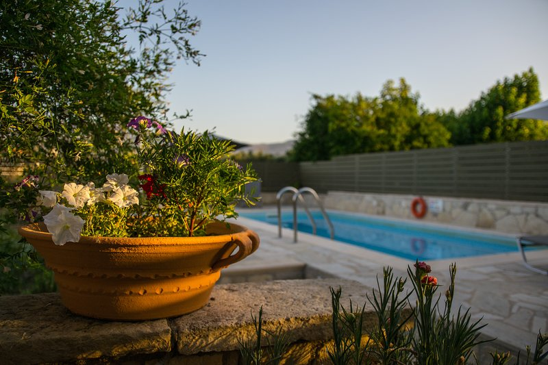 Villa Rouga traditional cretan cottage with pool, holiday rental in Vamos