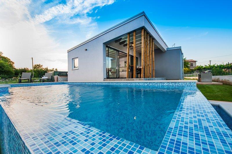 VILLA MARE ISTRA, pet-friendly, private pool, BBQ, holiday rental in Pavicini