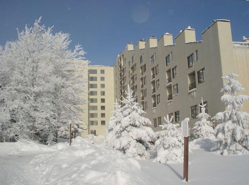 "SilverCreek "" Winter Wonderland""   Ski-In/Ski-Out complex... 2/bedroom 2/bath, holiday rental in Slatyfork"