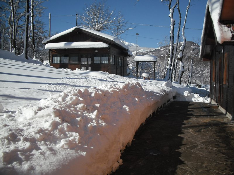 Big chalet with mountain view, vacation rental in Busana