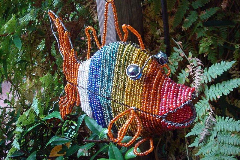 Felice, pesce arcobaleno