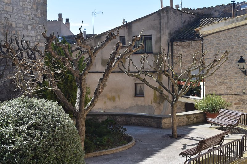 Ca la Bet Claravalls (Lleida), casa rural, holiday rental in Sant Domi