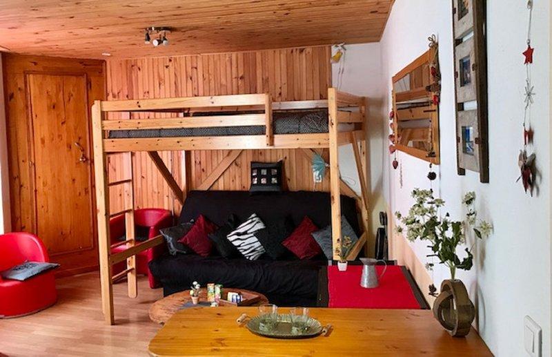 Location de charme⭐️⭐️⭐️PRÊT SKIS, LUGES, RAQUETTES, OFFERTS, vacation rental in Luz-Saint-Sauveur