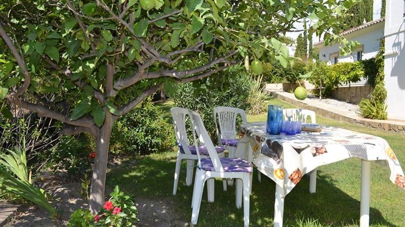 Desfrute de uma bebida fresca à sombra das árvores de fruto ...