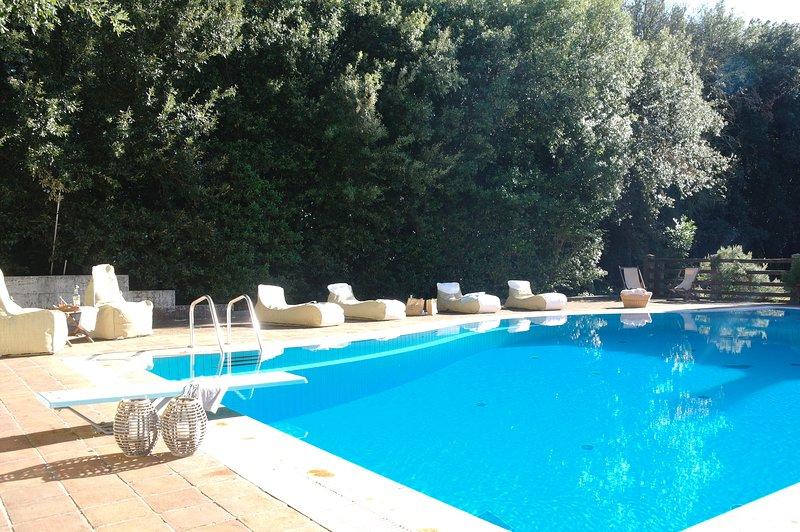 Villa San Gimignano, holiday rental in Palagio