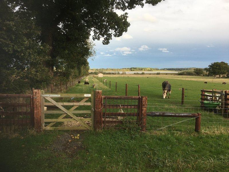 Marcher le long de la Deben; à Hemley et Newbourne