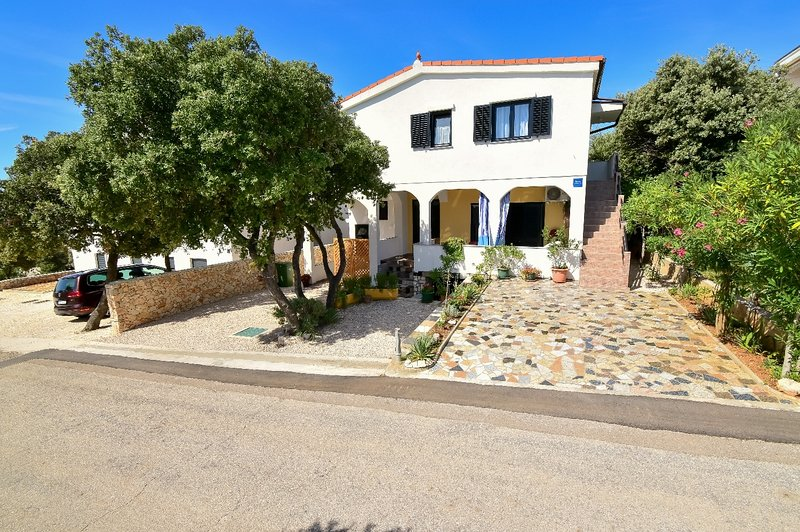 Mare - 100 m from sea A1(2+2) - Mandre, vacation rental in Mandre