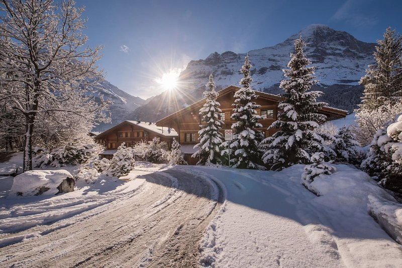 ❤️ Chalet D ❤️ NEW!, vacation rental in Grindelwald