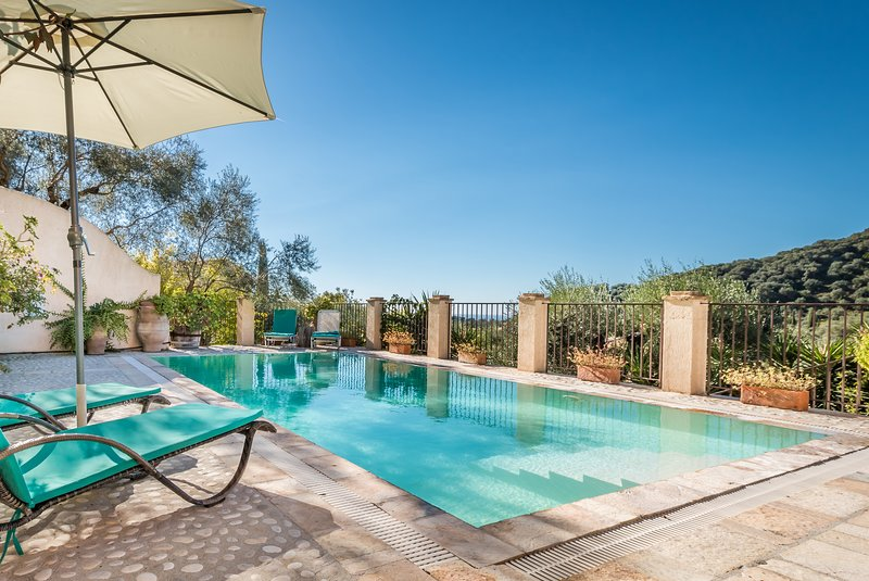 Private villa Lemonia, holiday rental in Avliotes