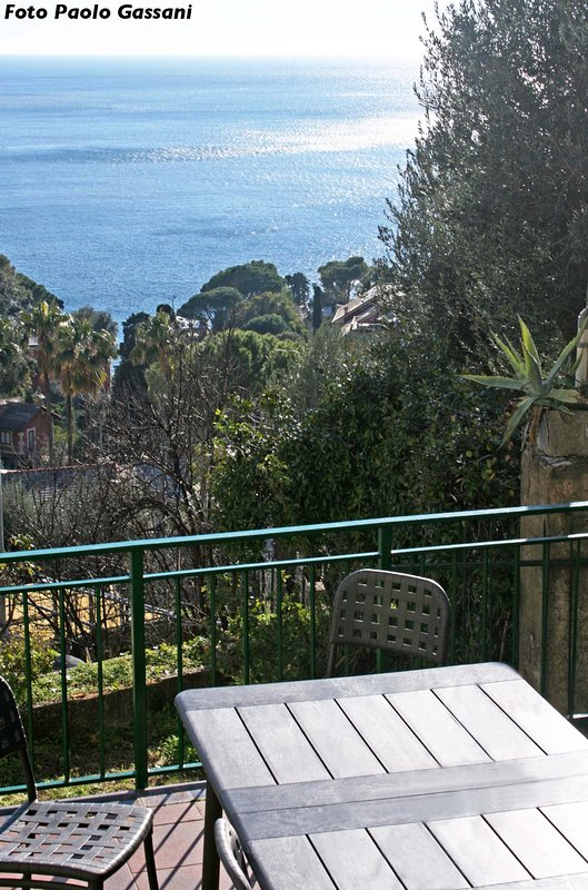 Panorama from the terrace