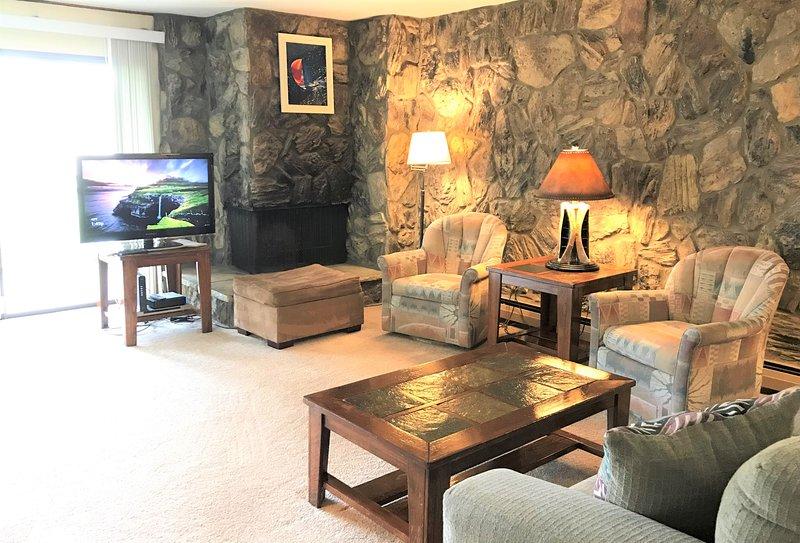 Your 'Home Away' Condo at Lake Cliffe condos in Dillon, vacation rental in Dillon