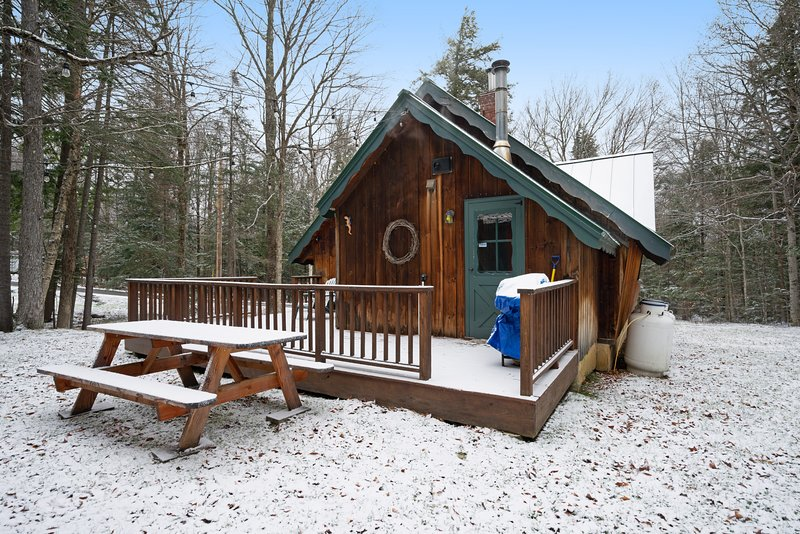 Secluded dog-friendly chalet in the woods w/fireplace, jetted tub, deck, & grill, holiday rental in Wilmington