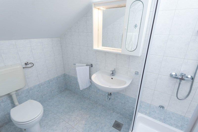 A12 (2 + 2): baño con inodoro