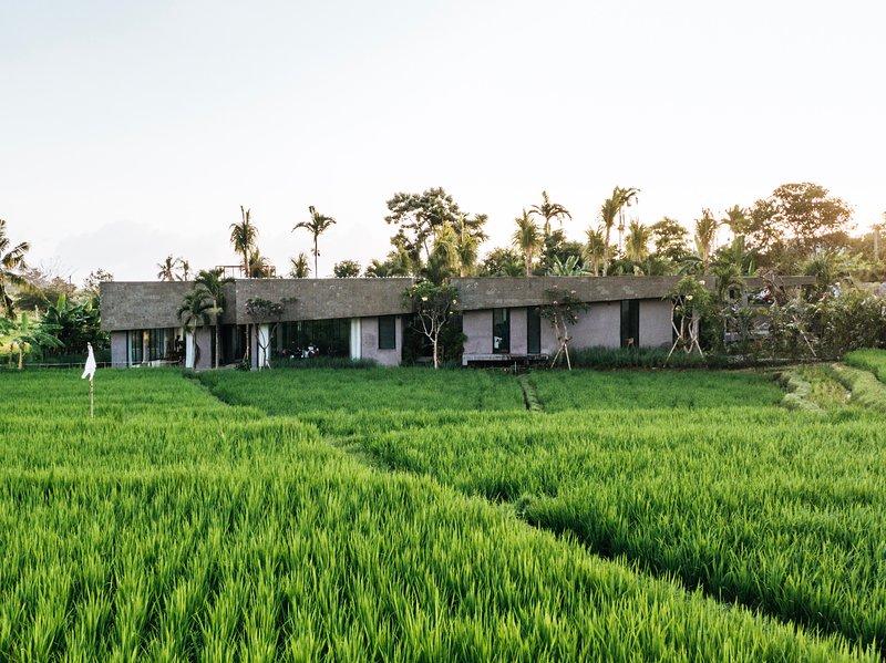 Haus Flora Bali – semesterbostad i Buduk