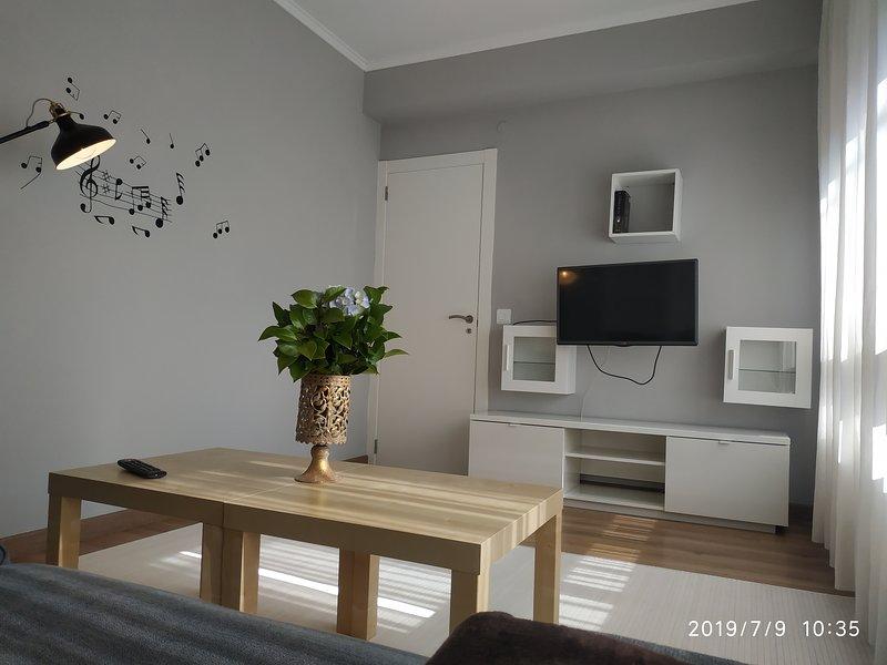Nice apartment with balcony & Wifi, vacation rental in Nemina