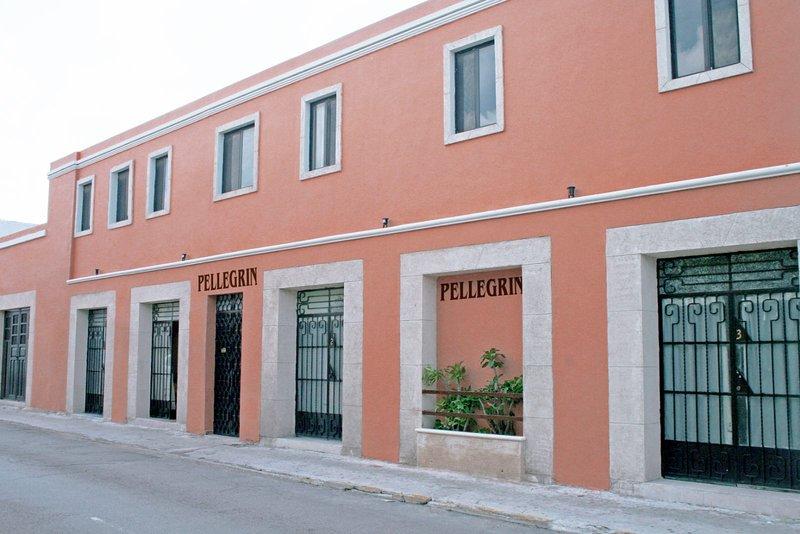 Hotel Casa Pellegrin, vacation rental in Merida