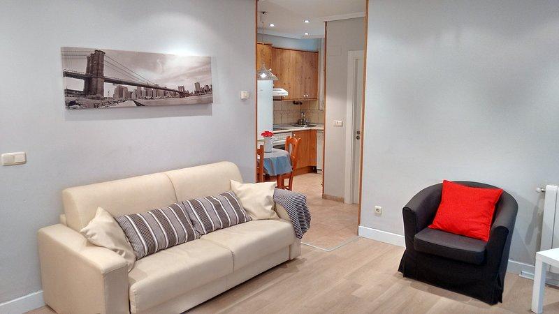 Apartament San Sebastián 8 plac 5 min beach WIFI, alquiler de vacaciones en Usurbil
