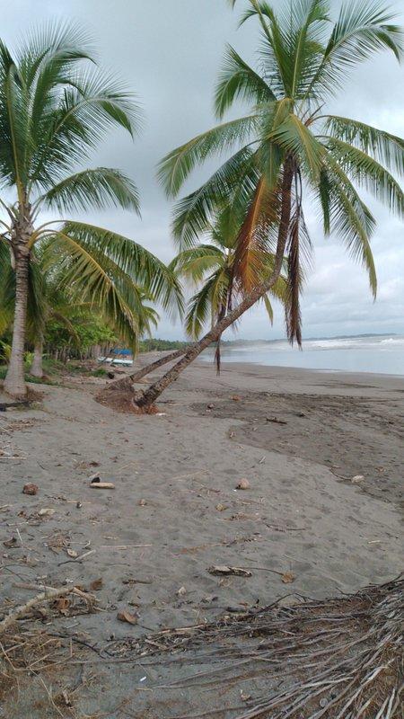 Spiaggia di fronte al campeggio