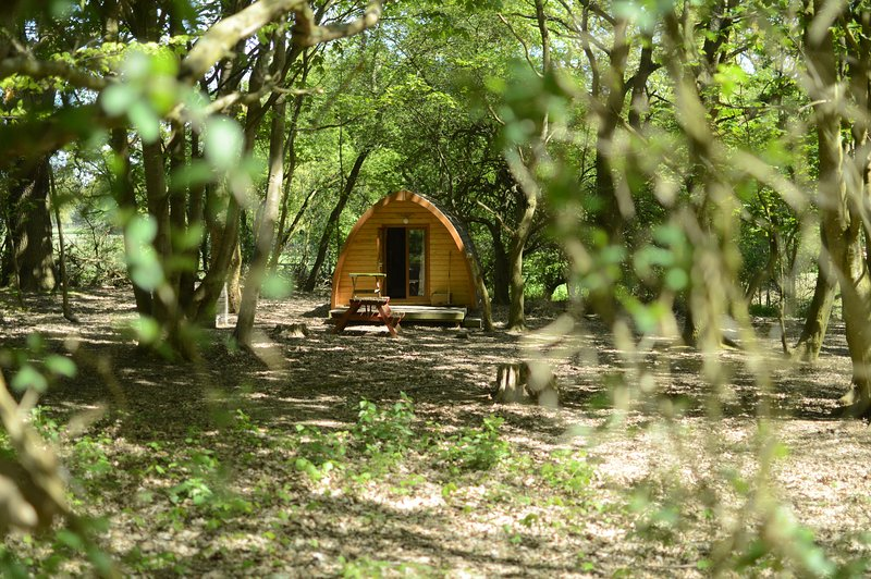 Eadmund MegaPod at West Stow Pods, location de vacances à Bury St. Edmunds
