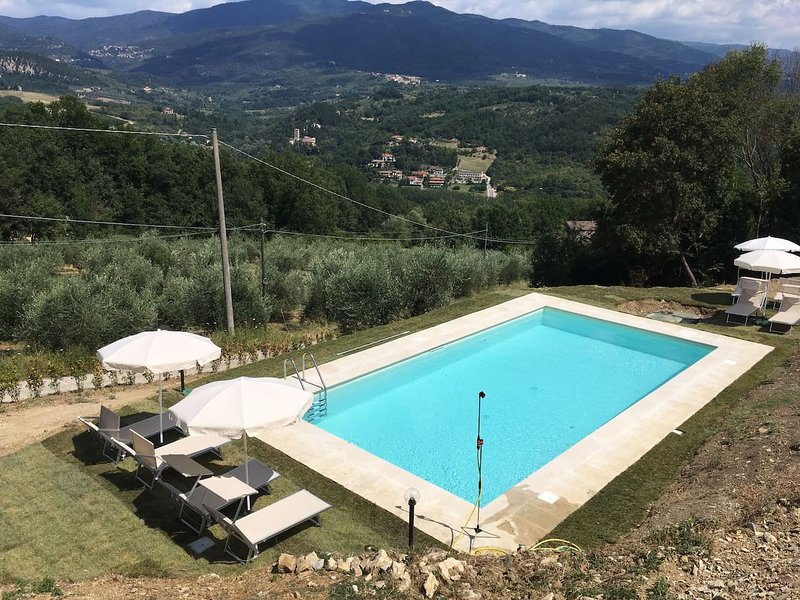 Amazing apt with shared pool & Wifi, holiday rental in Donnini