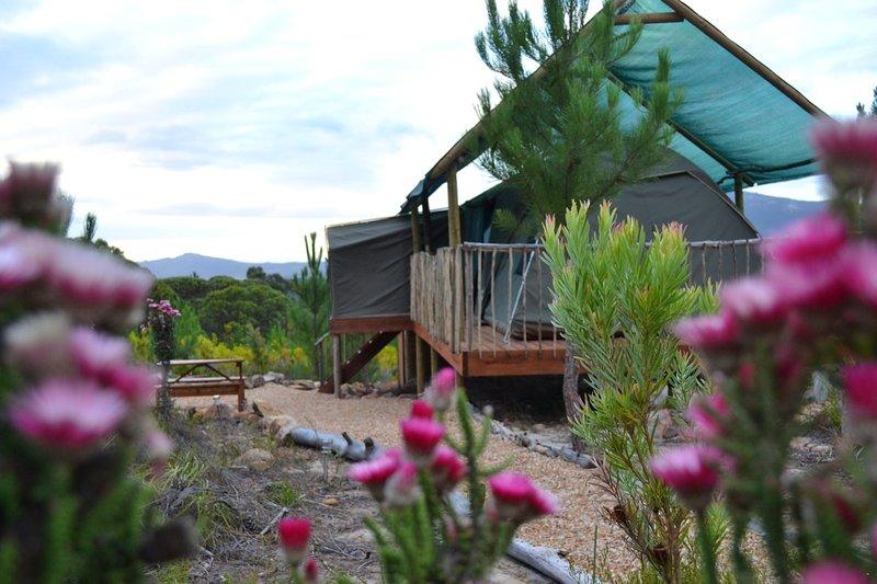 Otium Oasis Glamping & Camping, vacation rental in Stanford