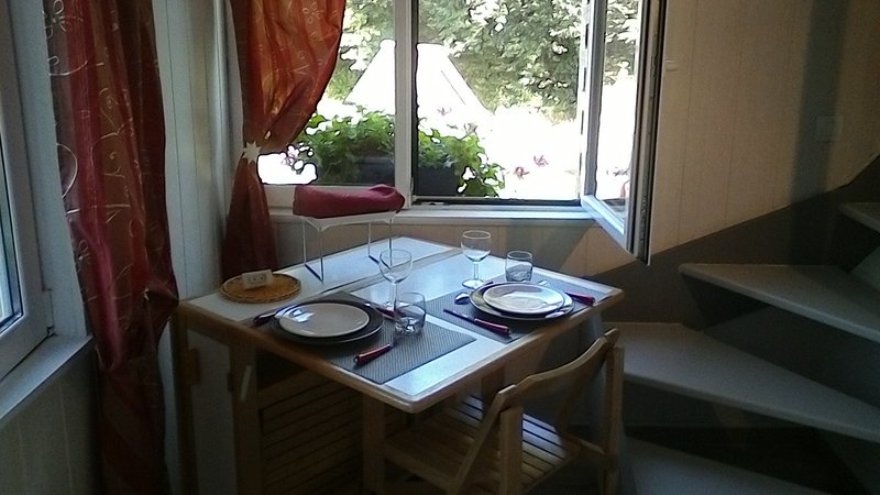Nice apartment with garden & Wifi, holiday rental in Vendeuvre
