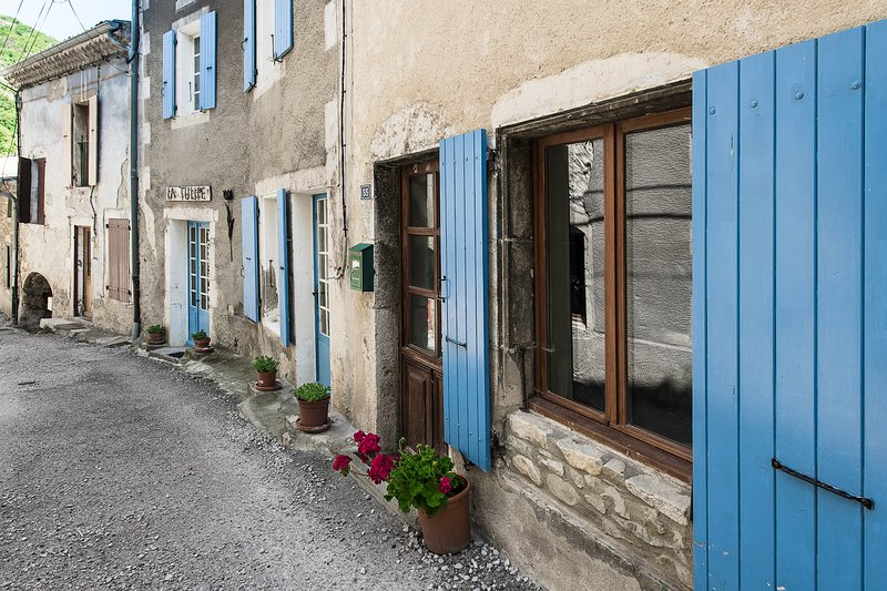 Ancient stone-built riverside house in listed Roman village, holiday rental in Rochebaudin