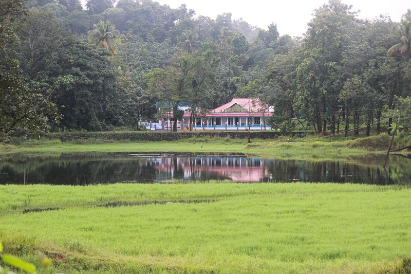 Jewel Homes Thattekad - A paradise for Birders and families, holiday rental in Kothamangalam