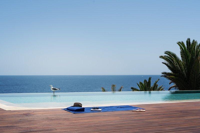 Villa Serenity with infinity Pool, alquiler vacacional en Puerto Calero