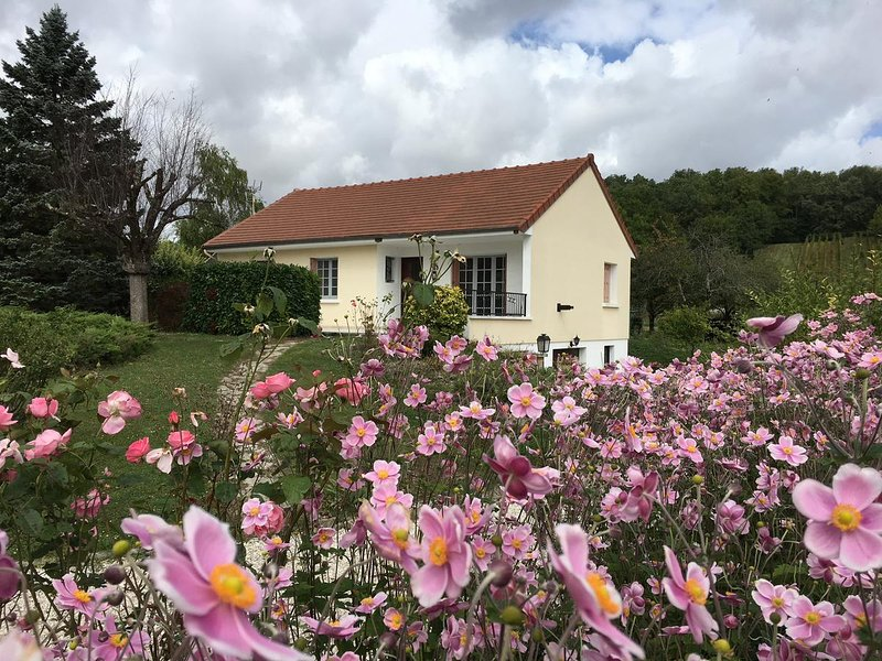 Spacious house with garden & Wifi, holiday rental in Clerey