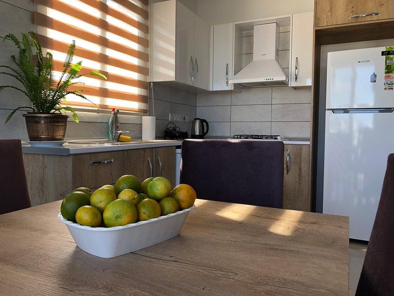 Seker Apartment: Kyrenia City Center. Mountain View. Easy Access., holiday rental in Zeytinlik